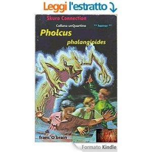pholcus-unquartino-2